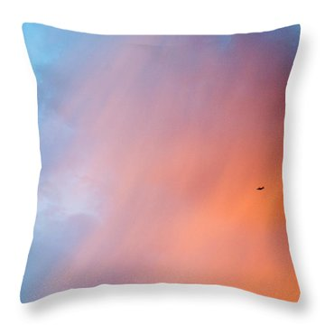 As An Airliner Passes By I Throw Pillow