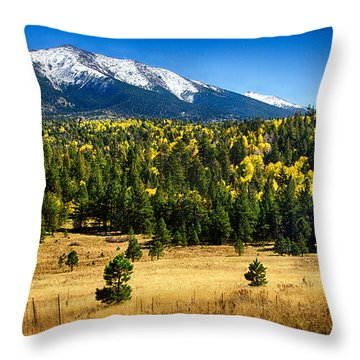 As Fall Arrives In Arizona  Throw Pillow