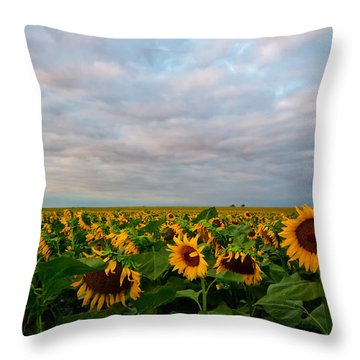 Throw Pillow featuring the photograph As Far As The Eye Can See by Ronda Kimbrow