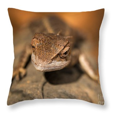 As I Climb Higher Throw Pillow