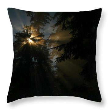 As If I Needed Some Inspiration Throw Pillow by Jeff Swan