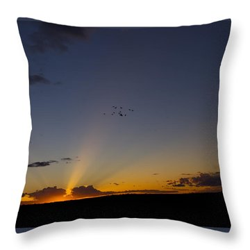 As Night Falls Throw Pillow