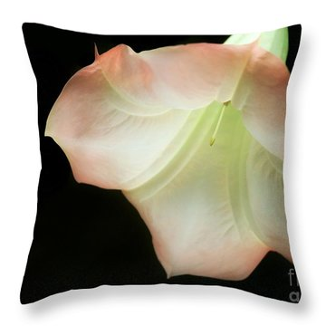 As The Bell Tolls Throw Pillow by Sabrina L Ryan