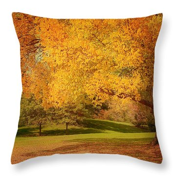 As The Leaves Fall Throw Pillow by Kim Hojnacki
