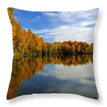 As The Leaves Turn Throw Pillow by Bob Hislop