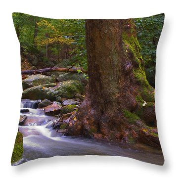 As The River Runs Throw Pillow by Karol Livote