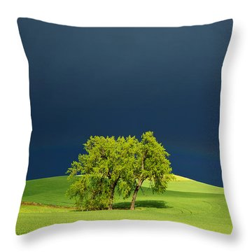 As The Sun Returns Throw Pillow