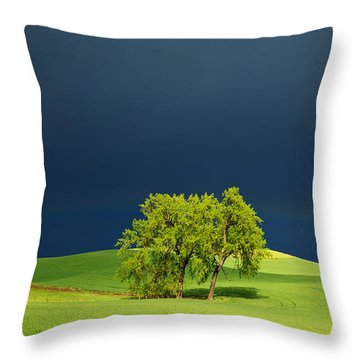 Throw Pillow featuring the photograph As The Sun Returns by Mary Lee Dereske