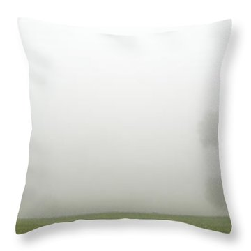 As You Can Not So Clearly See Throw Pillow