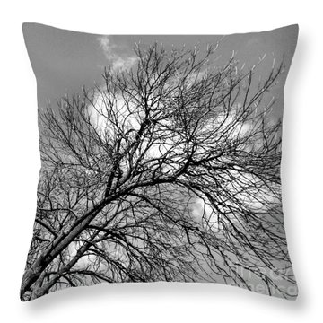 Throw Pillow featuring the photograph Ash And Light by Robyn King