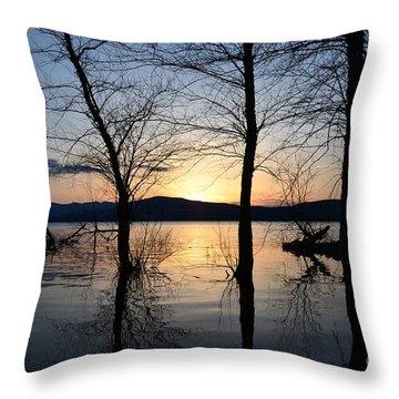 Ashokan Reservoir 43 Throw Pillow