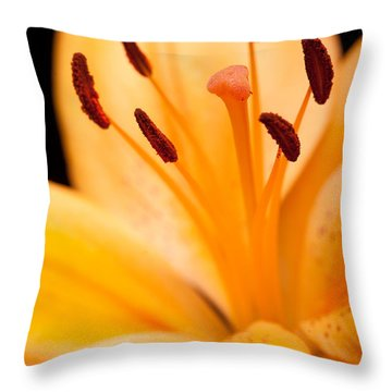 Asian Lily Throw Pillow by Sebastian Musial