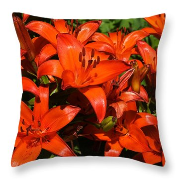 Throw Pillow featuring the photograph Asiatic Lily by Sue Smith