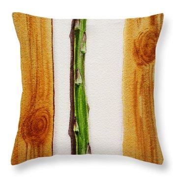 Asparagus Tasty Botanical Study Throw Pillow