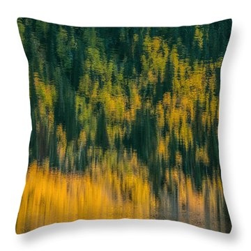 Throw Pillow featuring the photograph Aspen Abstract by Ken Smith