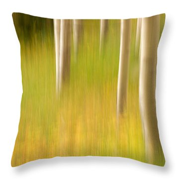 Aspen Abstract Throw Pillow