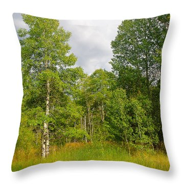 Throw Pillow featuring the photograph Aspen And Others by Jim Thompson
