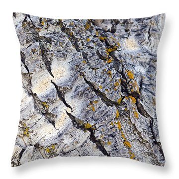 Aspen Bark Throw Pillow
