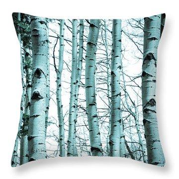 Aspen Blues Throw Pillow by Debbie Karnes