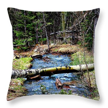 Throw Pillow featuring the photograph Aspen Crossing Mountain Stream by Barbara Chichester
