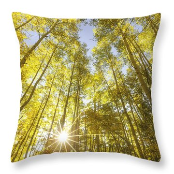 Aspen Day Dreams Throw Pillow