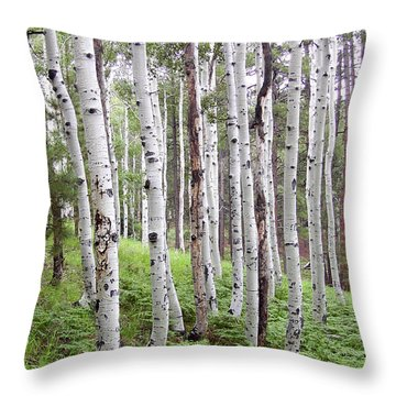 Aspen Forest Throw Pillow by Laurel Powell