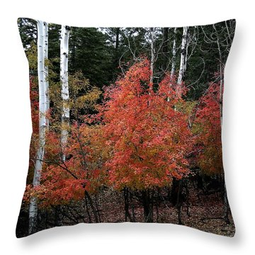 Aspen Glory Throw Pillow