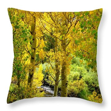 Throw Pillow featuring the photograph Aspen Gold by Marilyn Diaz