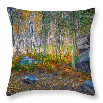 Throw Pillow featuring the photograph Aspen Grove by Jim Thompson
