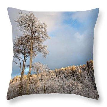 Aspen In Blue Throw Pillow