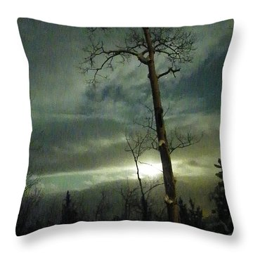 Aspen In Moonlight Throw Pillow by Brian Boyle
