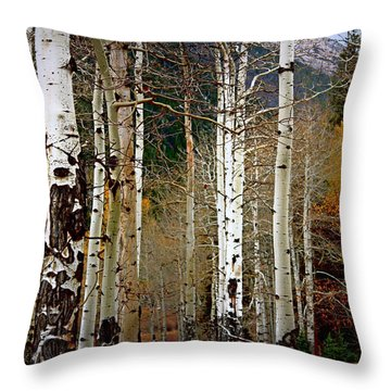 Throw Pillow featuring the photograph Aspen In The Rockies by Lynn Sprowl