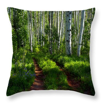 Aspen Lane Throw Pillow