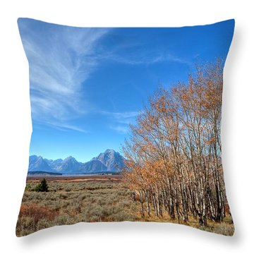 Throw Pillow featuring the photograph Aspen Last Stand  by David Andersen