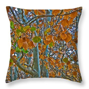 Throw Pillow featuring the photograph Aspen Leaves In The Fall by Mae Wertz