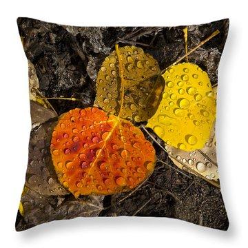 Aspen Leaves On Bishop Creek Throw Pillow by Joe Doherty