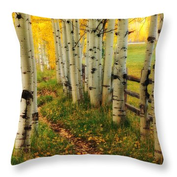 Aspen Path Throw Pillow
