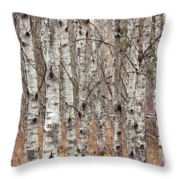 Throw Pillow featuring the photograph Aspen Poplar Woodlot by Jim Sauchyn
