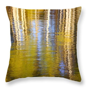Throw Pillow featuring the photograph Aspen Reflection by Kevin Desrosiers