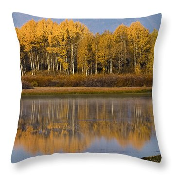 Throw Pillow featuring the photograph Aspen Reflection by Sonya Lang