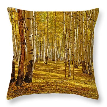 Aspen Sanctuary Throw Pillow