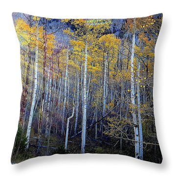 Aspen Sunset Throw Pillow