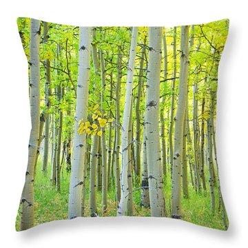 Aspen Tree Forest Autumn Time  Throw Pillow