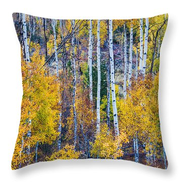 Aspen Tree Magic Cottonwood Pass Throw Pillow by James BO  Insogna