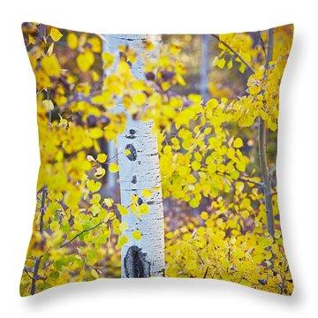 Aspen Tree Yellow Fall Foliage Throw Pillow