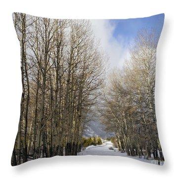 Aspen Trees Along Snowy Colorado Path Throw Pillow