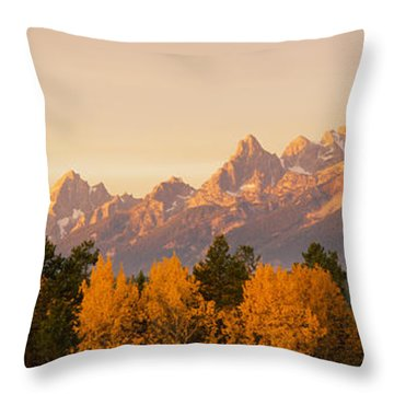 Aspen Trees On A Mountainside, Grand Throw Pillow by Panoramic Images