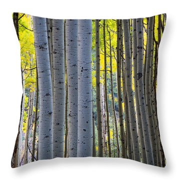 Aspen Trunks Throw Pillow by Inge Johnsson
