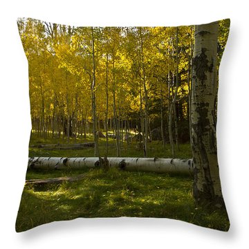 Throw Pillow featuring the photograph Aspens 4619 by Tom Kelly