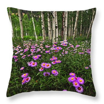 Aspens And Asters Throw Pillow